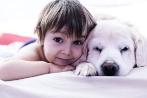Is Your Dog Your Child?
