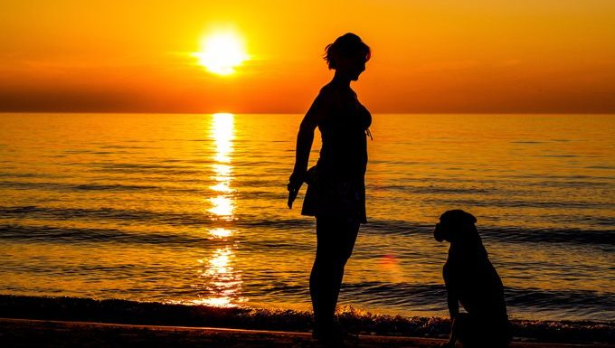 woman training a dog on a beach at sunset