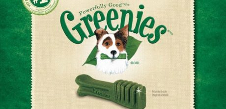 Greenie's Dental Chews Product Review