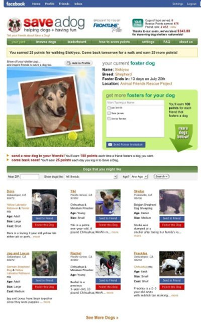 Save-a-Dog Facebook application: a cause app to help shelter dogs and rescue puppies