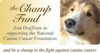 Canine Cancer Information