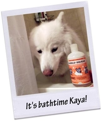 Kaya with Olive Bubble + Squeak Shampoo