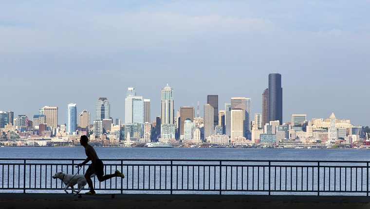 A man on his skateboard skates with his dog in front of the Seattle skyline.
