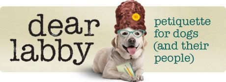Dear Labby: so what's in a dog's name?
