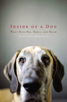Inside of a Dog: Interview with Alexandra Horowitz
