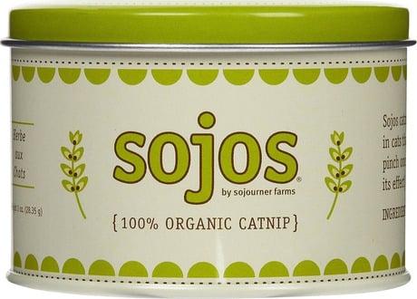 Product Review: Sojos Premium Organic Catnip