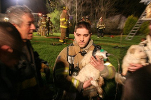 Puppies saved from house fire in New Jersey