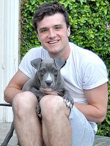 Hunger Games star Josh Hutcherson adopts a Pit Bull