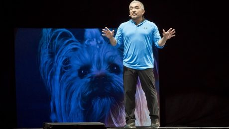 "Cesar Millan: Who Is ""The Dog Whisperer?"""