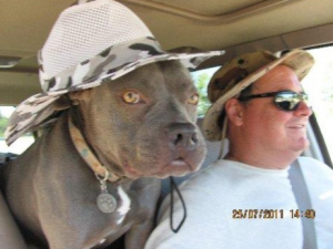 Animal control officer killed in the line of duty
