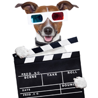 DogTime video of the week: January 11, 2013