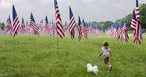 25 dogs celebrating Flag Day