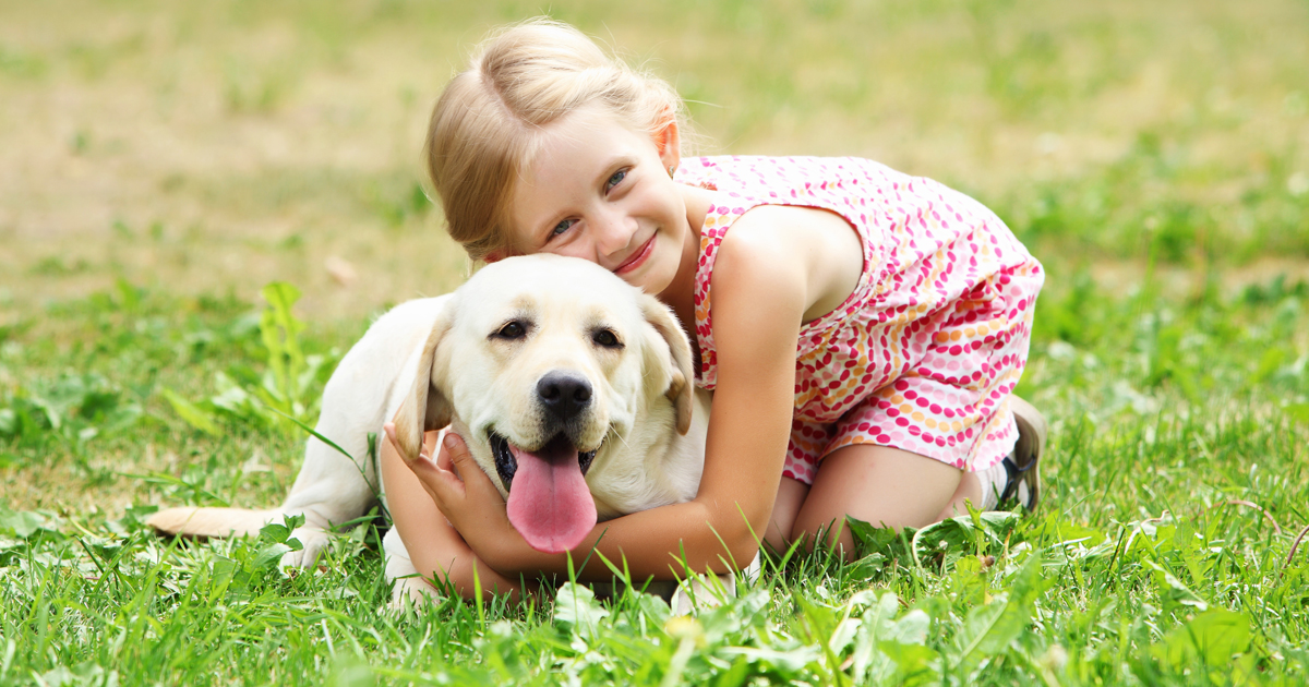 10 ways to ensure safe encounters between dogs & people - Dogtime