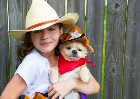 20 Million Pet Owners Expected To Spend $350 Million On Their Pets This Halloween