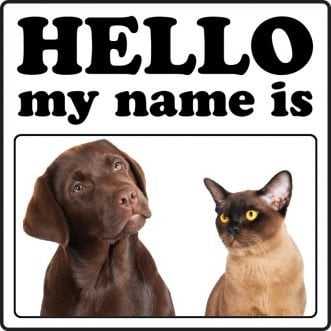 Top 10 most popular dog and cat names of 2013