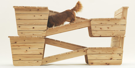 In the dog house: 13 indoor structures for your pet - Dogtime