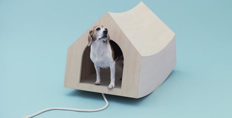In the dog house  indoor structures for your pet   DogtimeBeagle House  Updating a classic is what the architects at MVRDV decided upon when creating this space   Beagles in mind  actually  it was Snoopy