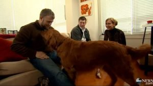 One dog changes the lives of two war veterans