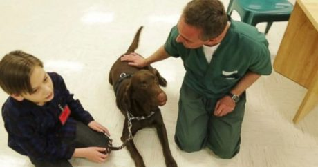 Colorado inmate trains dogs to help autistic children