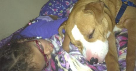 Man allegedly shoots neighbor's dog and posts pic on Facebook