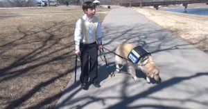 Boy finds new best friend in service dog funded by community