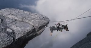 Meet Whisper, the BASE jumping dog