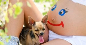 Doggy doulas: Preparing your dog for a human infant
