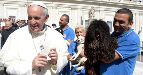 Does Pope Francis believe all dogs will go to heaven?