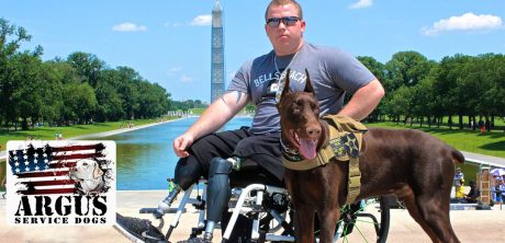 Service Dogs Helping Veterans on K-9 Veterans Day