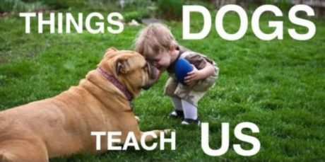 The Wonderful Things Dogs Teach Us [VIDEO]