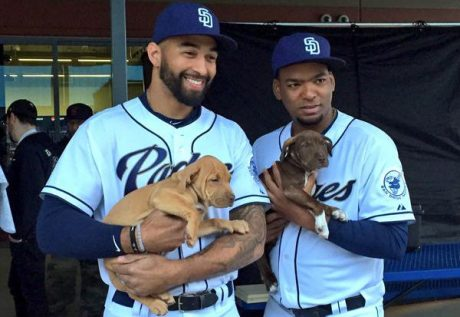 San Diego Padres Baseball Team Up With Helen Woodward Animal Center