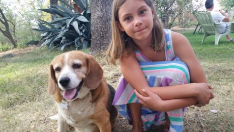 How A Sensitive Beagle Helped One Family Cope With The Death Of Their Father