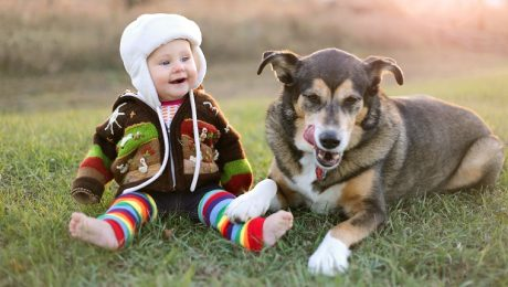8 Funny Dogs Making Babies Laugh [VIDEOS]