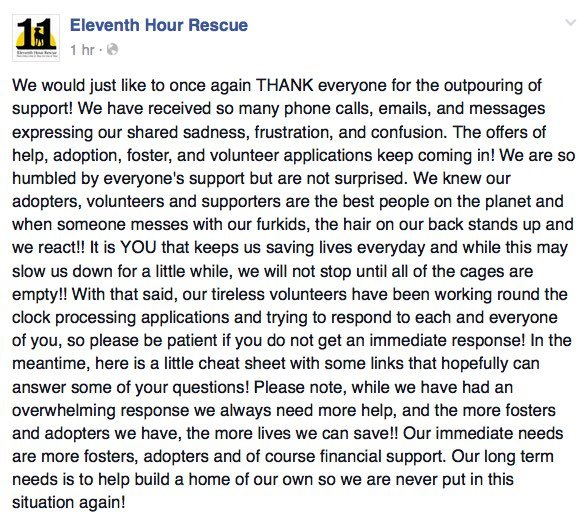 Eleventh-hour-pet-rescue