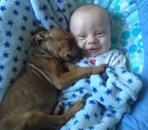 Happy Hug Your Hound Day: 30 Pictures Of Cuddly Dogs Giving Happy Hugs