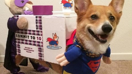 23 Awesome Dog Halloween Costume Ideas [Pictures]