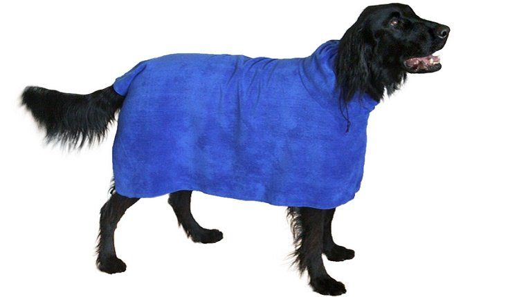 A black dog models a blue, wearable towel that looks like a bath robe for dogs against a white background.