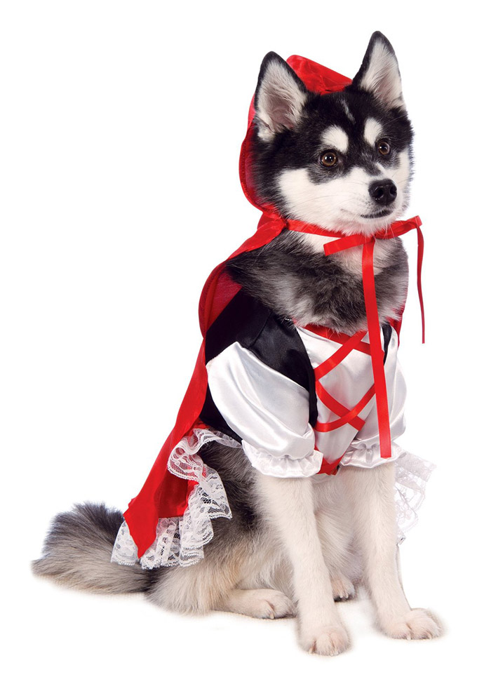 (Photo Credit Amazon)  sc 1 st  Dogtime & Top 10 Trending Dog Halloween Costumes For 2015 - Dogtime