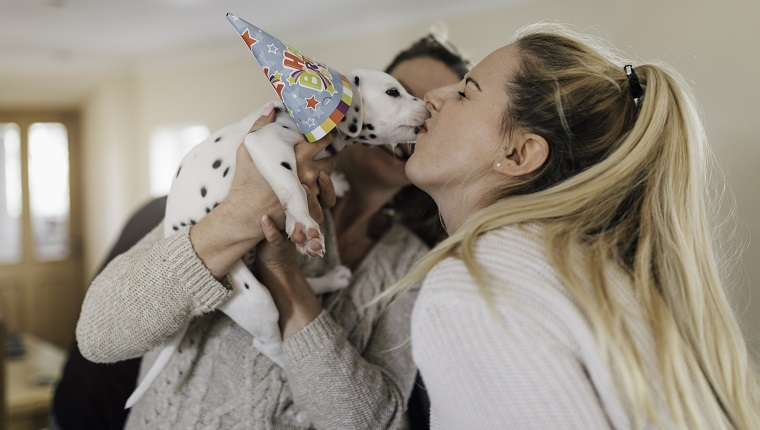 An attractive young woman smiles as she holds a dalmatian puppy in her arms as it licks her face. The woman is wearing a party hat.