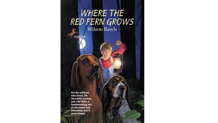 Cover art for Where the Red Fern Grows. A boy with a lantern stands behind two Coonhounds.