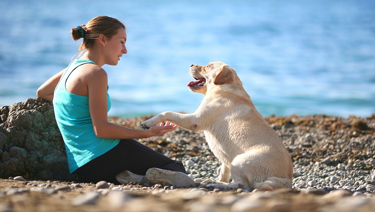 A woman in workout clothes sits on a beach with a dog who holds out his paw to her.