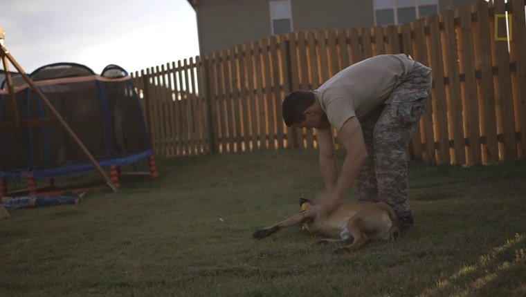 McDonald bends down to pet Layka in his backyard.