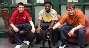 Troubled Youth Learn Compassion By Training Dogs