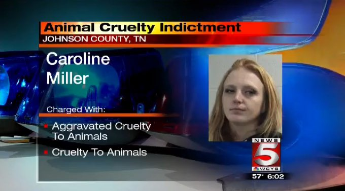 15-counts-animal-abuse