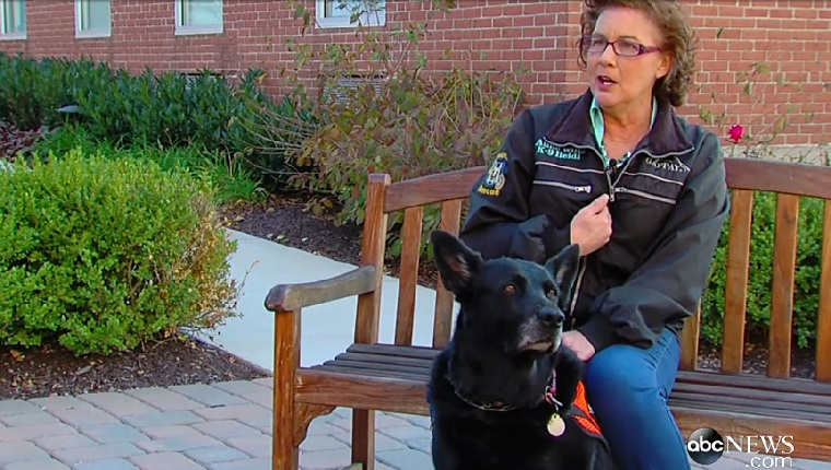 Wills sits on a bench with her black shepherd-lab mix, Heidi.