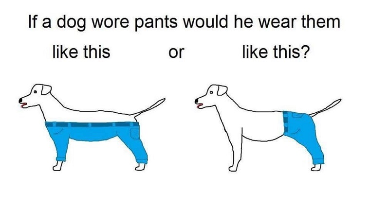 "A drawing of two dogs. One wears pants that cover his hind quarters and one wears pants that cover all four legs and leave the back exposed. The caption reads, ""If a dog wore pants would he wear them like this or like this?"""