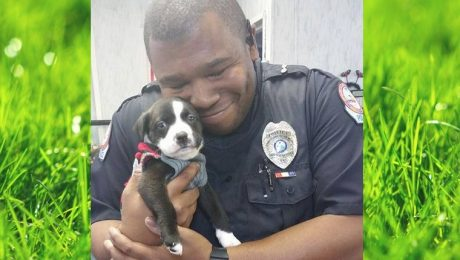 Police Officer Responds To Call At Animal Shelter And Leaves With A New Puppy