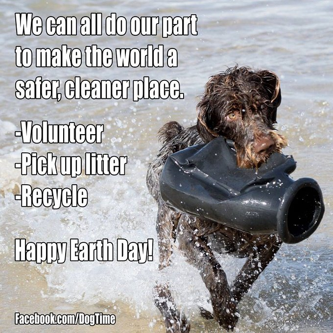 earth-day-dog-meme