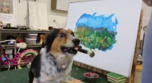 Jumpy The Dog Creates Amazing Art! [VIDEO]