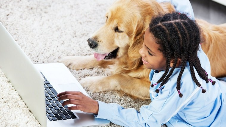 """Girl lying on the carpet with golden retriever dog, and typing on the laptop."""